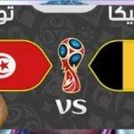 بعد الهزيمة تونس ضد بلجيكا: من يتحمل المسؤولية؟