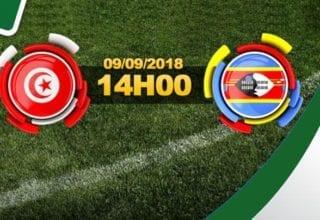 بث مباشر لمباراة سوازيلندا - تونس
