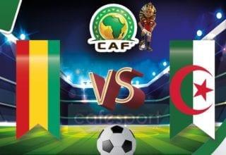 الجزائر vs غينيا